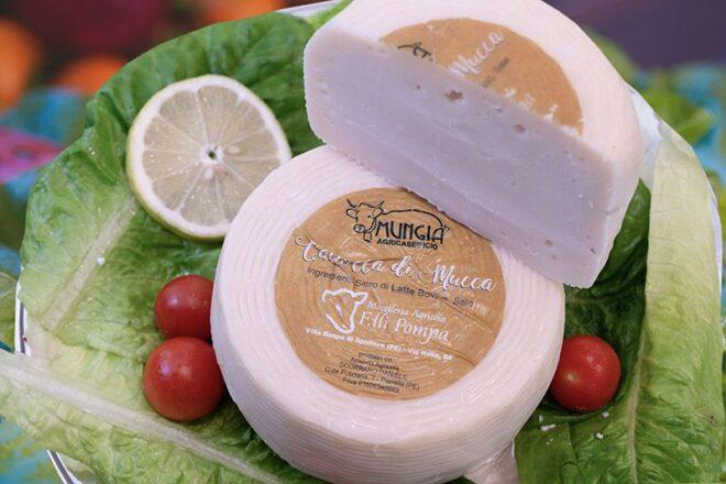 formaggio-mucca